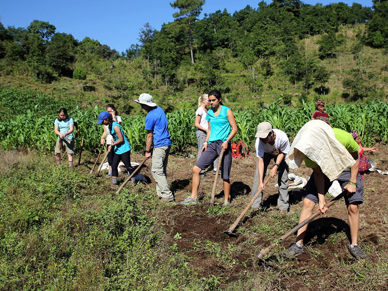 Tulane students earning service learning credits